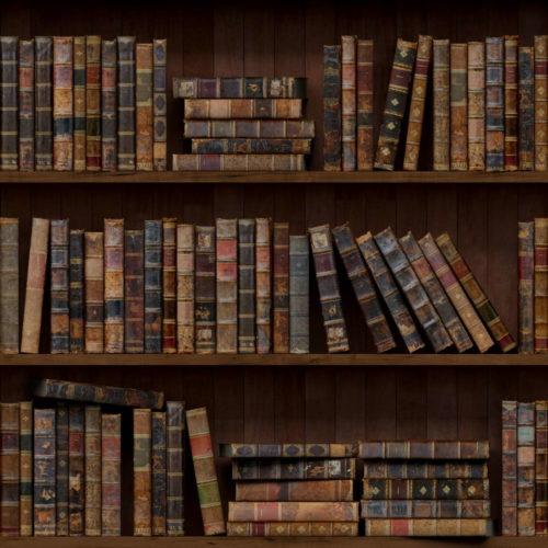 Самые популярные авторы Флибусты по жанрам