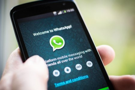 новые функции WhatsApp. Лого